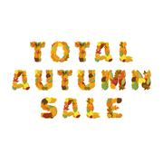 Word Sale made of bright maple leaves on white background for signboard or Stock Illustration