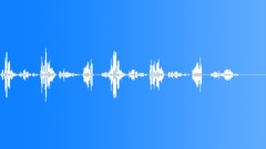 Magic Witches Voice Alien Voice Jitterbox Piercing Shriek Sound Effect