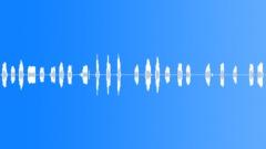 Animals Alpacas Mother Vocals Series x23 Rare Cooing Sharp Smooth Onboard Attac Äänitehoste