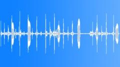 Animals Alpacas Single Calls Licks Series x 6 Vocal Low End Rumble Licking Trum Sound Effect
