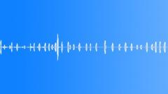 Animals Alpacas Single Calls Series x 32 Vocal Medium Low End Rumble Appeased T Sound Effect