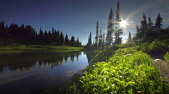 POV hiking trail Mount Rainier National Park, Washington Stock Footage