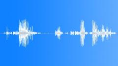 Animals Chimpanzee - Int - MCU - Vocals Starts Calm Then High Pitch Whimpers & Sound Effect