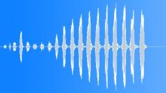 Birds Eagles Bald Eagle Squawks Series Rhythmic Raspy Hoarse Medium Close Exter Sound Effect