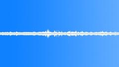 Nature Beach Dawn 6 AM Beach Town Neighborhood Bird Calls Waves Breaks Light Wi Sound Effect