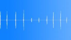 Birds Various Bird Owl Cry Short Wail Sound Effect