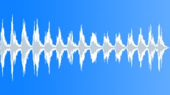 Birds Specific Breeds Steller Sea Eagle Big Loud Calls Nice Raspy Chirps Consta Sound Effect