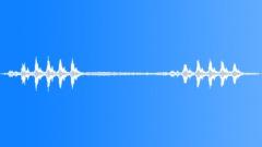Birds Various Florida Everglades Song Short BG Traffic Voices Sound Effect