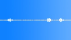 Backgrounds The Cook Islands Rarotonga Atiu Mangai Birds Atiu 7 AM Myna Medium Sound Effect