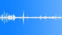 Anims Ducks - Birds - Uruguay Birds Parakeets Morning Traffic Construction Spri Sound Effect