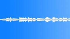 Sports Soccer - Rio Brasil Botafogo Yell Whisle Call Soccer Golden Cross Sound Effect