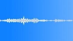 Animals Dogs - Dog Bull-Terrier Bull-Terrier Groan Talking Sound Effect