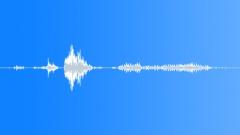 Animals Dogs - Dog Bull-Terrier Bull-Terrier Growl Snappy Sound Effect