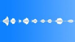 Animals Bulls Single Vocals Series x9 Restless Uneasy Light Moves Throaty Mediu Sound Effect