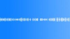 Communications Cameras Camera FM2 Const Roam POV Sound Effect