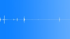 Communications Cameras Camera FM2 Load Film 1 Sound Effect