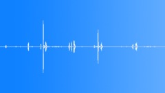Animals Capuchin Monkey Chirp Cough Content Sound Effect