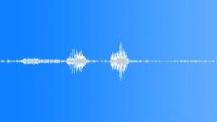Animals Capuchin Monkey Grunt x2 Short Sound Effect