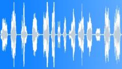 Animals Cats Cat Vocal Meows Anxious Some Licks Throaty Breathe ECU Interior BG Sound Effect