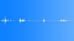 Foley Money Coins Coins Moves Drop Sort Lite Sound Effect