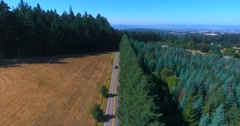 Aerial shot of a country road that splits a forest and a field Stock Footage