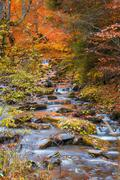 Mountain stream with stones in late Autumn, saturated color Stock Photos