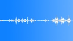 Crowds Middle East Crowd Gazza Strip Chant Zeal Sound Effect