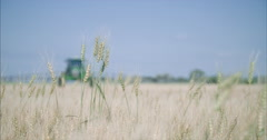 Wheat field being sprayed Stock Footage