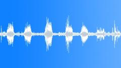 Crowds Church Mass Cetatuia Monastery Denia Prohodului Celebration Male Speaker Sound Effect