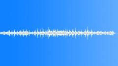 Animals Dogs - Dog Doberman Doberman Drink Lap Water Sloppy Sound Effect