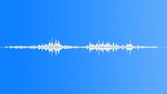 Animals Dogs - Dog Doberman Doberman Run Play Collar Tired Sound Effect