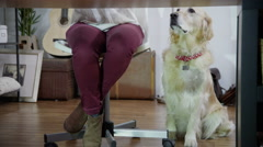 4K Woman working at home with her dog beside her Stock Footage