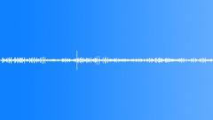 Animals Ducks Ducks Quack Content Splashes Sound Effect