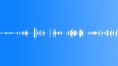 Miscellaneous Walla Exterior Mandarin Rickshaw Driver Calling Out Sound Effect
