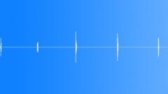 Miscellaneous Impact Hit Fleshy Smacks Wet Sounding Slaps Thick Sound Effect