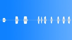 Cars Specific Pontiac Firebird Onboard Horn Series x10 Short A1 Engine A2 Cabin Sound Effect