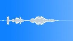 Groups American Indians Flute Shaman Bird Call Peeps Sound Effect