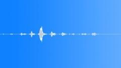 Groups American Indians Flute Shaman Bird Cheeps Fast Sound Effect