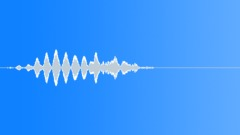 Groups American Indians Flute Shaman Bird Hoot Trill Sound Effect