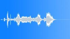Groups American Indians Flute Shaman Bird Peeps Shril Sound Effect