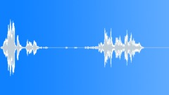Groups American Indians Flute Shaman Bird Squeals Sound Effect