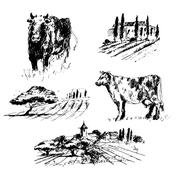 Countryside hand drawn collection. Stock Illustration