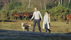 4K Young attractive couple walking hand in hand through a forest with their dog Stock Footage