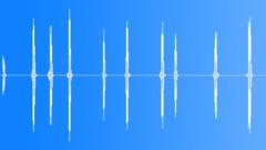 Birds Eagles Golden Eagle Sparse Squawks Series Erratic Pauses Medium Close Ext Sound Effect