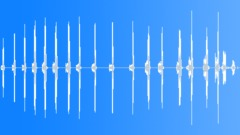 Birds Eagles Golden Eagle Scream Rhythmic Series Squawks Moves Close POV Exteri Sound Effect