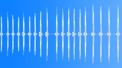 Birds Eagles Golden Eagle Squawks Series Short Throaty Medium Close Exterior Sound Effect