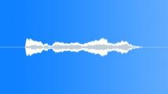 Birds Hawks European Northern Goshawk Single Chirp Alarm Call Close POV MS Sound Effect