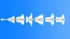 Birds Falcons Gyrfalcon Squawks Series Anxious Expressive Vocals Close POV Exte Sound Effect