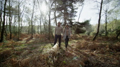 4K Attractive couple exercising their dog in the woods on a fresh autumn morning Stock Footage