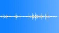 Birds Hawks Wings Flail Ground Bushes Flutter Close POV Exterior Sound Effect